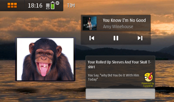 TuneWiki Lyrics Widget