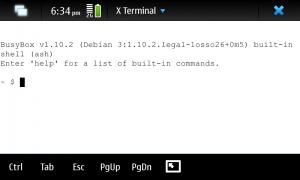 X Terminal