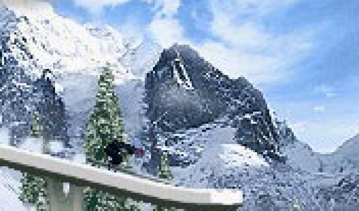 Ski jumping 2010