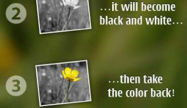 ColorizIt