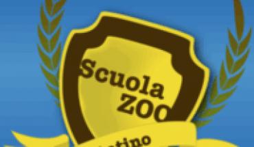 Latino by ScuolaZoo.com