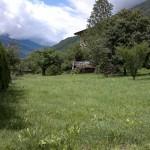 Foto scattata con Nokia X7-00