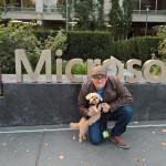 Foto scattata con Lumia 950
