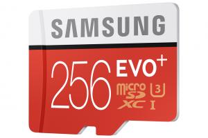 Micro SD EVO Plus da 256 GB