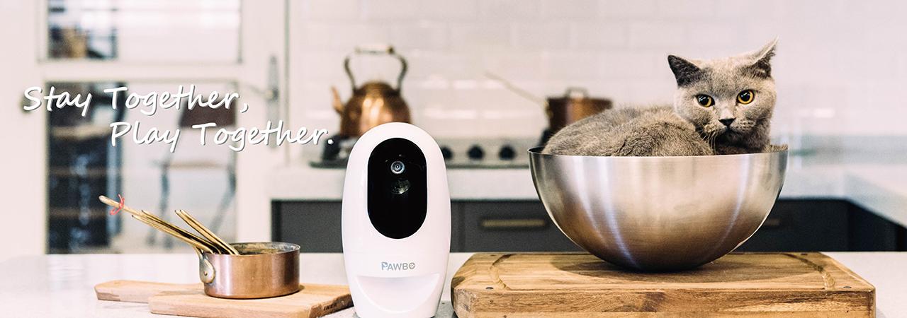 Acer presenta Pawbo+, la fotocamera wireless che permette di interagire a distanza con cani e gatti