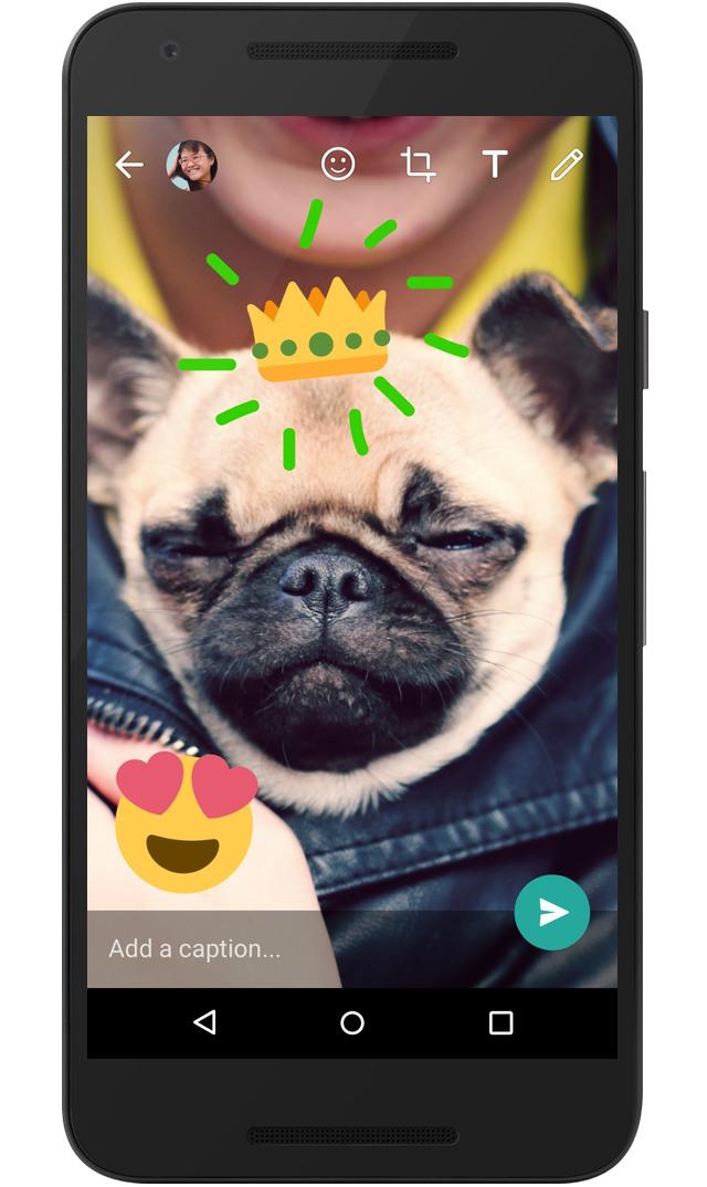 WhatsApp per Android, introdotte nuove funzioni per la fotocamera