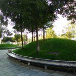 Foto scattata con Nokia 2720 Flip