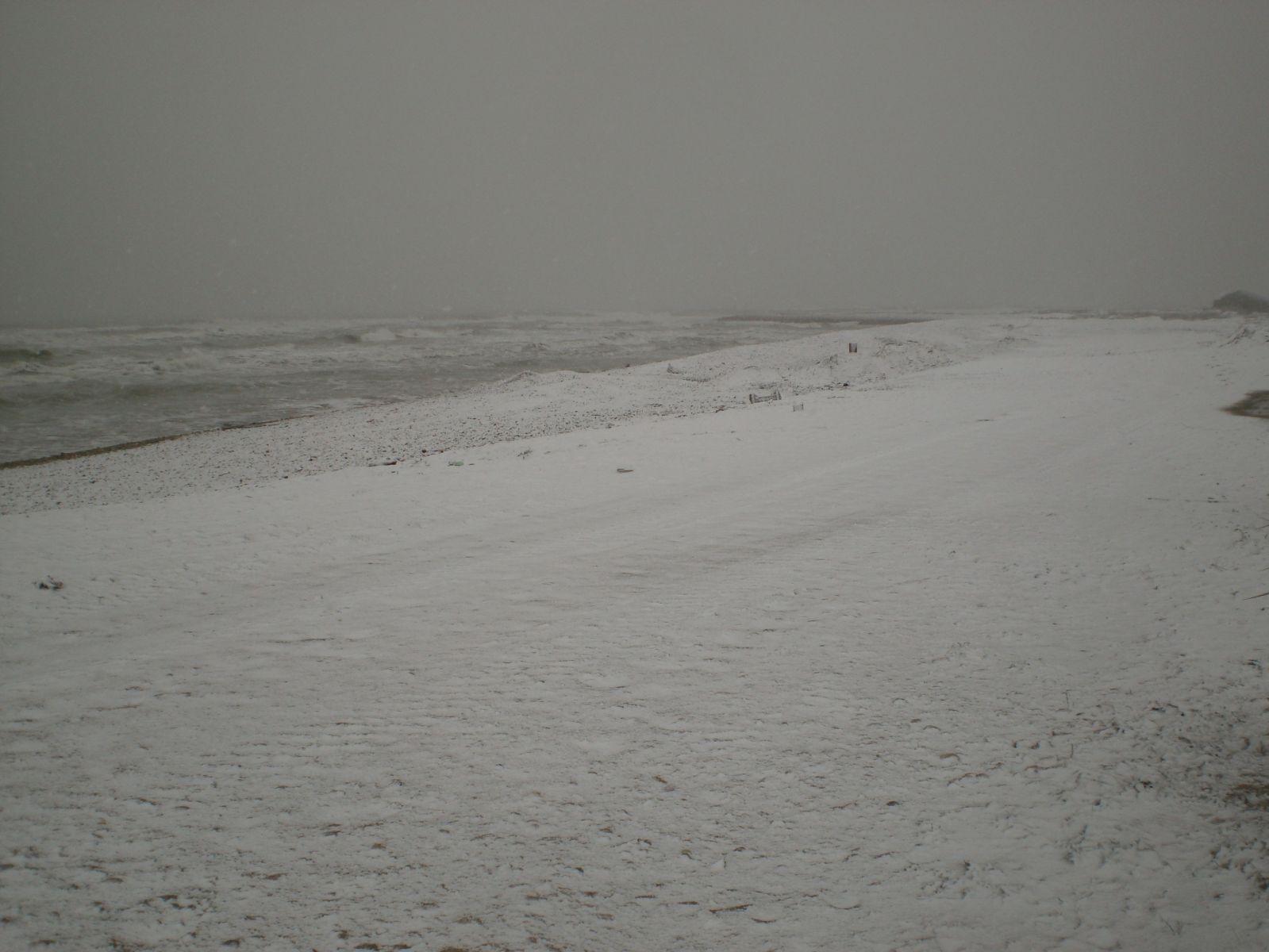 Mare & Neve