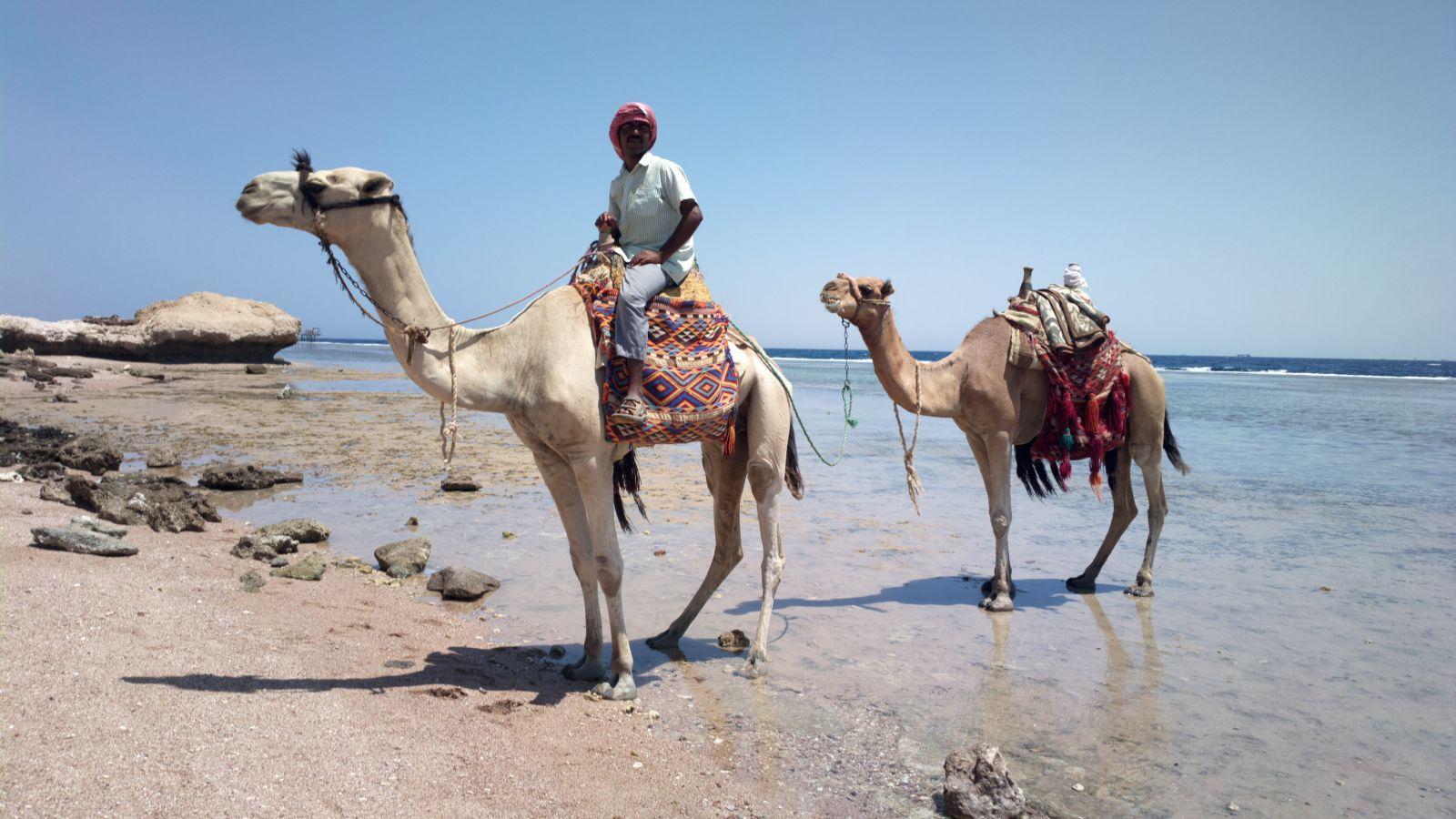 Nokia 808 - La spiaggia di Sharm El Sheikh