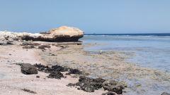 Scorcio di spiaggia nei pressi del Sea Club Hotel