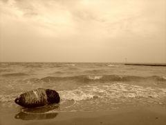 Scorcio di mare