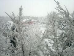 Neve!