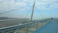 Ponte Sul Mare, Pescara