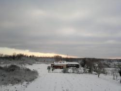 2013-02-23-391.jpg