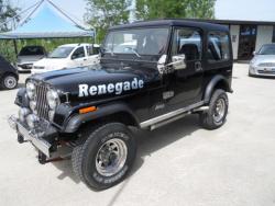 jeep-renegade-usato-888316_800_1401290528.jpg