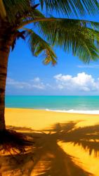 beach_dcanxvqw.jpg